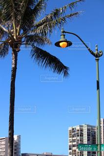 ハワイの街灯の写真・画像素材[1161176]