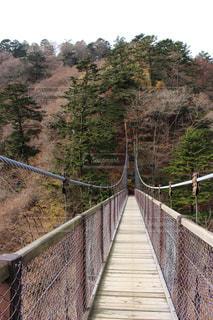 ワイヤー フェンス以上の長い橋の写真・画像素材[1161329]