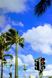 ハワイの空の写真・画像素材[1170173]