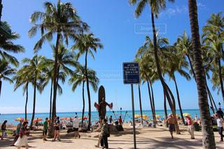 ヤシの木とビーチの人々 のグループの写真・画像素材[1189961]