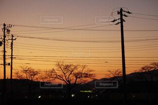 夕焼けの写真・画像素材[1172521]