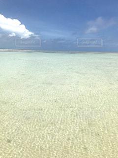 コンドイ浜🏝💓✨の写真・画像素材[2291375]