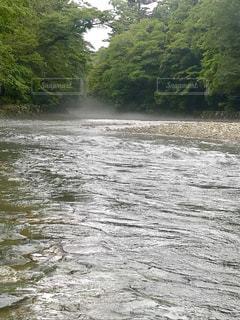 五十鈴川の写真・画像素材[2340277]