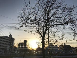 街の夕焼けの写真・画像素材[1162198]