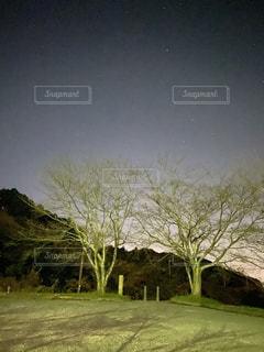 月夜の公園の写真・画像素材[2802028]