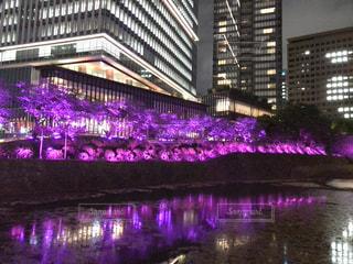 建物の前に紫色の光 - No.1162360