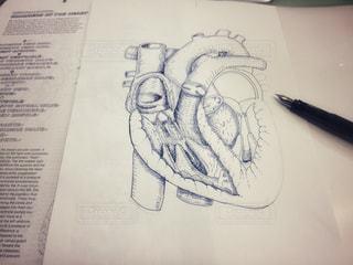 万年筆と心臓ペン画途中の写真・画像素材[1163935]