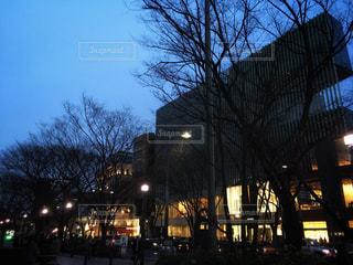 夜の街の景色の写真・画像素材[1178654]