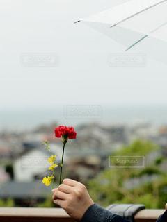 花を持っている人の写真・画像素材[1220862]