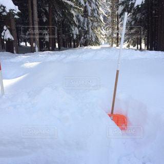 豪雪の中でキャンプの写真・画像素材[1165739]
