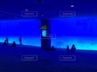名古屋港水族館 巨大水槽の写真・画像素材[1166833]