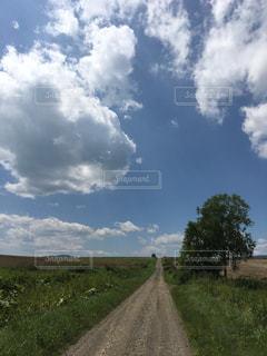 大空と大地との写真・画像素材[1169704]