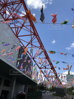 東京タワーとこいのぼりの写真・画像素材[1167812]