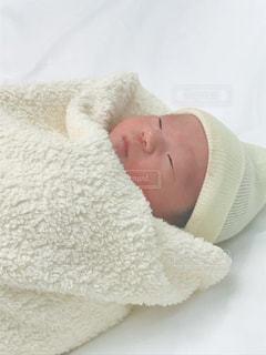 赤ちゃんの写真・画像素材[1173347]