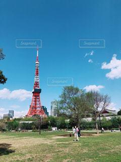 東京タワーの写真・画像素材[1174242]