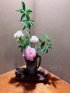 花の写真・画像素材[1191621]