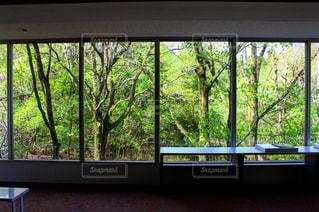 大きな窓の景色の写真・画像素材[1166167]