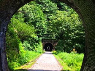 トンネル続き!の写真・画像素材[1429726]