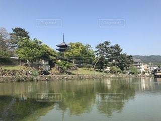 奈良の写真・画像素材[1171141]