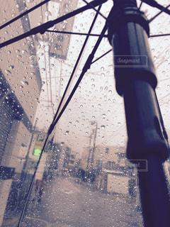 傘の写真・画像素材[1179890]