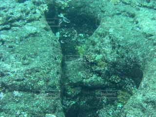 海底遺跡の写真・画像素材[1170289]