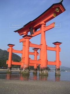 厳島神社の鳥居の写真・画像素材[1172070]