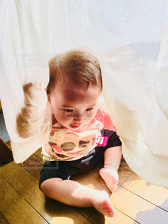 カーテンと遊びましょ‼️の写真・画像素材[1269500]