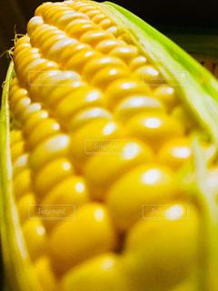 トウモロコシのアップの写真・画像素材[1276421]
