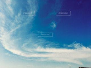 青空に白い蛇の写真・画像素材[1308768]