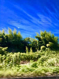 針で刺すような雲の写真・画像素材[1321852]