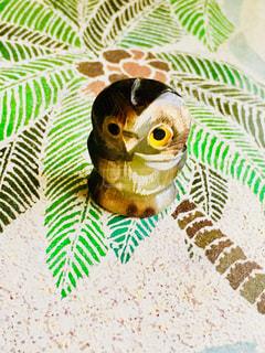 フクロウの写真・画像素材[1398013]