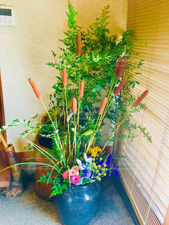 植物の花の花瓶の写真・画像素材[1407590]