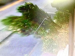 台風21号の写真・画像素材[1432257]
