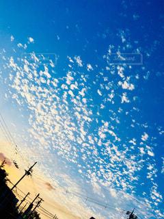 鳥が飛んでるみたい。の写真・画像素材[1434632]