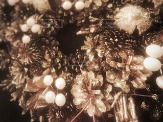 クリスマス ツリーのアップの写真・画像素材[1514915]
