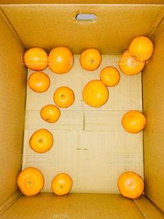箱の中のみかんの写真・画像素材[1672427]