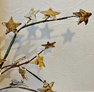 星のディスプレイの写真・画像素材[1727934]