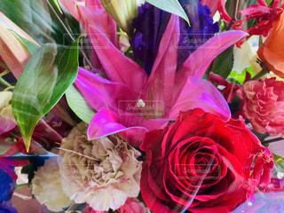 花束の写真・画像素材[2105842]