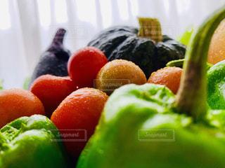 新鮮な野菜の写真・画像素材[2260888]