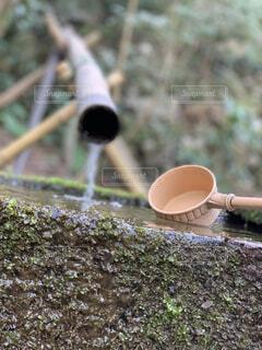 山の湧き水で手洗いの写真・画像素材[4293985]