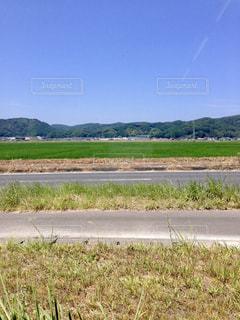 道路の脇に草と空道の写真・画像素材[1188350]