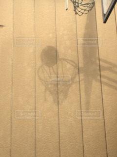 シュートの影の写真・画像素材[1169898]