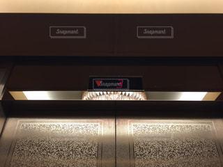エレベーターの写真・画像素材[1175869]