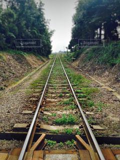 まっすぐ続く線路の写真・画像素材[1193232]