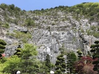 岩が多い区域で茂みのグループの写真・画像素材[1184426]