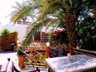エジプトダハブの南国カフェの写真・画像素材[1170362]