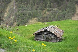 アルプス山脈に位置する小さな村 - No.1172598