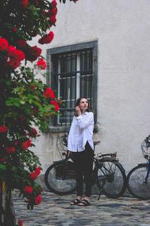 綺麗なバラが咲く路地にての写真・画像素材[1567412]