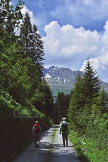 自然の中をハイキングの写真・画像素材[1567422]