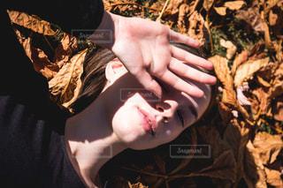 秋の夕暮れの写真・画像素材[1645780]